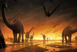 Theories about extinction